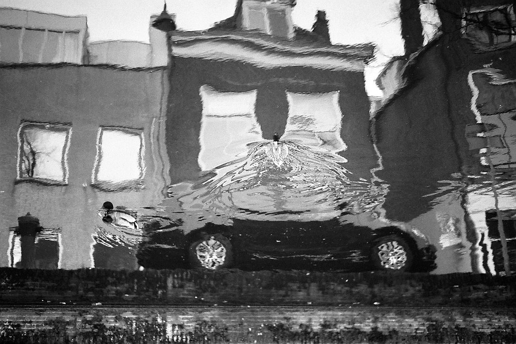 Harbel Photography, The Birds - Dissolving car. Two ducks on a black car. Vera Fotografia