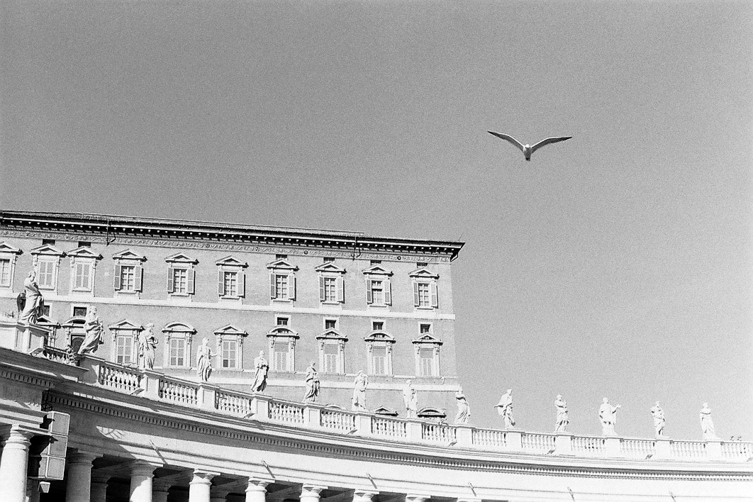 Harbel Photography, The Birds - Papal Apartments. Papal Apartments. Vera Fotografia