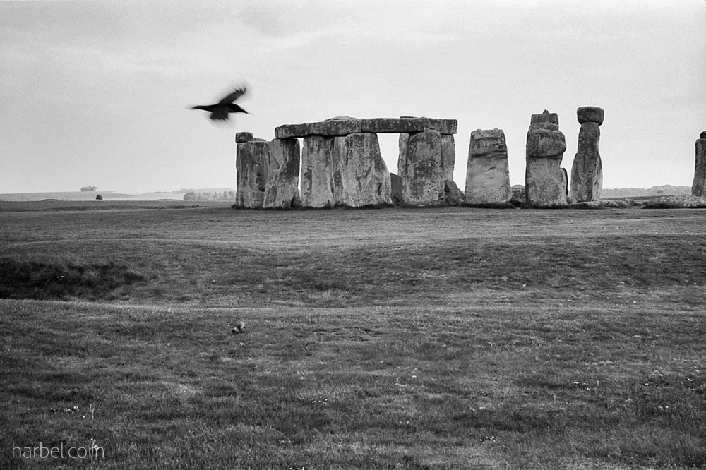 Harbel Photography, The Birds - Stoneheng dusk. Two birds at Stonehenge. Vera Fotografia