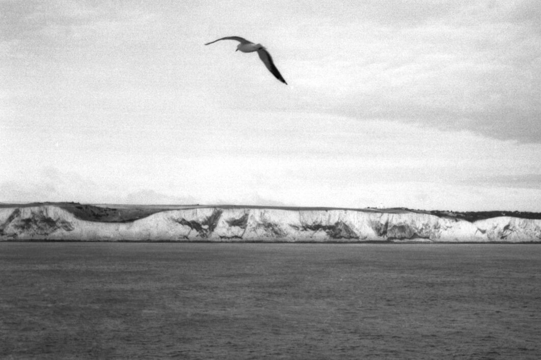 Harbel Photography, The Birds - White cliffs. White cliffs. Vera Fotografia